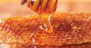 خواص عسل ؛ خواص مهم عسل گارچی و کوهی و وحشی چیست برای پوست
