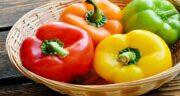 خواص فلفل دلمه ای ؛ نر و ماده و زرد و قرمز در طب سنتی برای پوست و زنان باردار