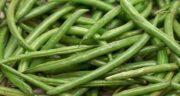 خواص لوبیا سبز ؛ فواید برای کودکان در لاغری و بدنسازی برای رحم و مضرات