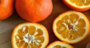 خواص نارنج ؛ نارس برای کبد و لاغری و دیابت و خواص برگ و هسته و دمنوش برگ نارنج