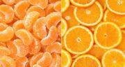 تعبیر خواب درخت نارنگی و پرتقال ، معنی دیدن درخت نارنگی و پرتقال در خواب