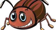 تعبیر خواب حشرات روی بدن ، معنی دیدن حشرات روی بدن در خواب چیست