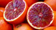 تعبیر خواب کندن نارنگی از درخت ، معنی دیدن کندن نارنگی از درخت در خواب
