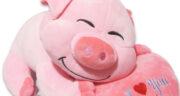 تعبیر خواب خوک و سگ ، معنی دیدن خوک و سگ در خواب های ما چیست