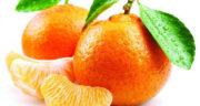 تعبیر خواب میوه نارنگی ، معنی دیدن میوه نارنگی در خواب های ما چیست
