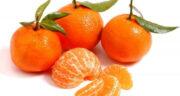 تعبیر خواب نارنگی هدیه گرفتن ، معنی دیدن نارنگی هدیه گرفتن در خواب چیست