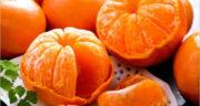 تعبیر خواب نارنگی و پرتقال ، معنی دیدن نارنگی و پرتقال در خواب های ما چیست