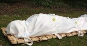 تعبیر خواب تکه تکه شدن جنازه ، معنی دیدن تکه تکه شدن جنازه در خواب چیست