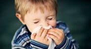 زنجبیل در سرماخوردگی ؛ مصرف زنجبیل تازه برای بهبود سرما خوردگی
