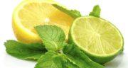آب لیمو ترش برای معده ؛ تاثیر آن بر هضم راحت غذا