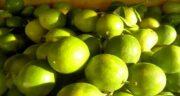 آب لیمو ترش برای چشم ؛ تاثیر آن بر تیزبینی و ضعیف نشدن