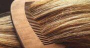 آووکادو و رشد مو ؛ خاصیت میوه آووکادو برای افزایش رشد موها