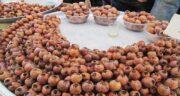 ازگیل ایرانی ؛ در کدام مناطق ایران میوه ازگیل وجود دارد