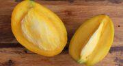 انبه چه خواصی دارد ؛ فواید میوه انبه برای سلامتی و درمان بیماری ها