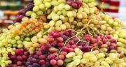 انگور و عسل ؛ دارویی شفا بخش و پرخاصیت با ترکیب انگور و عسل