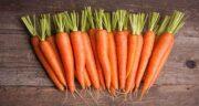خواص آب هویج برای مردان ؛ باعث بروز چه بیماری هایی در مردان می شود؟