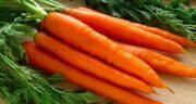 خواص آب هویج برای کبد ؛ بهبود کبد چرب و کاهش وزن با آب هویج