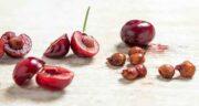 خواص آلبالو خشک در طب سنتی ؛ و طب اسلامی و سرماخوردگی و بارداری