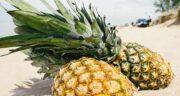 خواص آناناس برای زخم ؛ فواید ویتامین C موجود در آناناس برای درمان زخم ها