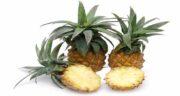 خواص آناناس و مضرات