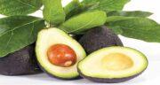 خواص آووکادو برای زنان ؛ فواید استفاده میوه آووکادو برای سلامت خانم ها
