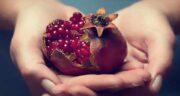 خواص انار ترش برای کبد ؛ میوه انار سرشار از خاصیت برای کبد