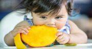خواص انبه برای کودکان ؛ تاثیر خوردن میوه انبه برای تقویت ایمنی کودکان