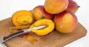 خواص انبه در شیردهی ؛ تاثیر خوردن میوه انبه برای خوش طعم شدن شیر مادر
