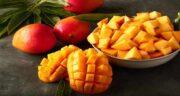 خواص انبه در کرونا ؛ میوه انبه مقوی سیستم دفاعی بدن در برابر کرونا