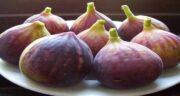 خواص انجیر در دوران شیردهی ؛ تاثیر استفاده از میوه انجیر در زمان شیردهی