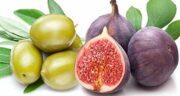 خواص انجیر و زیتون ؛ معجزات درمانی و ارزش غذایی انجیر و زیتون