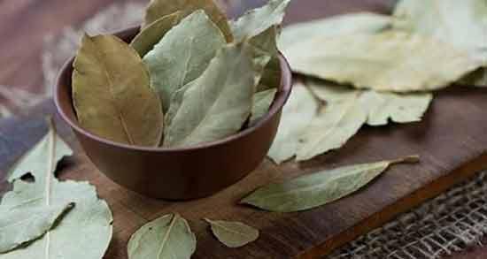خواص برگ بو برای پوست و مو ؛ فواید استفاده از برگ بو برای پوست و مو