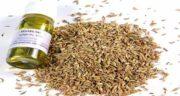 خواص رازیانه در زنان ؛ معرفی یک داروی گیاهی سرشار از خاصیت برای زنان