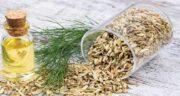 خواص رازیانه در طب سنتی ؛ فواید استفاده از دمنوش و عرق رازیانه