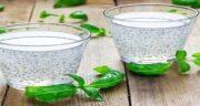 خواص و مضرات تخم شربتی ؛ آشنایی با فواید و عوارض مصرف تخم شربتی