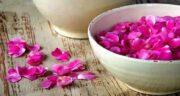 خواص گلاب برای کبد چرب ؛ تاثیر استفاده از گلاب در بیماری کبد چرب
