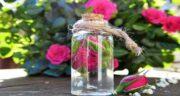 خواص گلاب در آب ؛ به آبی که روزانه می نوشید حتما گلاب اضافه کنید