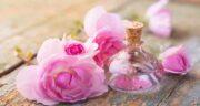 خواص گلاب در طب سنتی ؛ فواید مصرف گلاب برای بدن از نظر طب سنتی