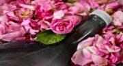 خواص گلاب سنگین ؛ آشنایی با فواید و ترکیبات گلاب درجه یک