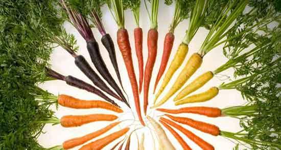 خوردن آب هویج ناشتا برای چاقی صورت ؛ متناسب شدن اندازه صورت و زیبایی صورت