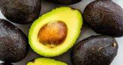 طبع آووکادو چیست ؛ از نظر طب سنتی میوه آووکادو چه طبعی دارد