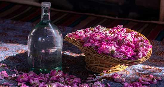 طبع گلاب دو آتیشه ؛ در طب اسلامی گلاب دارای چه نوع طبعی است