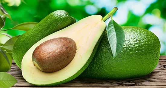 علت تلخی آووکادو ؛ چرا میوه آووکادو کمی مزه تلخی دارد؟