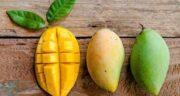 عوارض انبه ؛ آشنایی با میوه انبه و مضرات خوردنش برای بدن