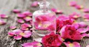 عوارض گلاب ؛ آشنایی با عوارض جانبی مصرف گلاب برای بدن
