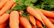 فواید آب هویج برای سرماخوردگی ؛ بهبود تب و لرز و سرفه و آبریزش بینی