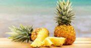 فواید آناناس ؛ میوه آناناس سرشار از ویتامین C و اسید فولیک