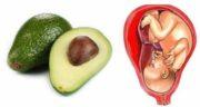 فواید آووکادو در بارداری ؛ آیا مصرف آووکادو برای زن باردار مفید است؟