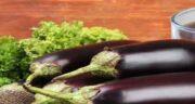 فواید بادمجان در طب سنتی ؛ سلامت جسم و شادابی در طی روز