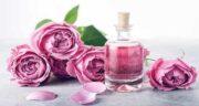 فواید گلاب پوست و مو ؛ خاصیت شگفت انگیز گلاب برای سلامت پوست و مو